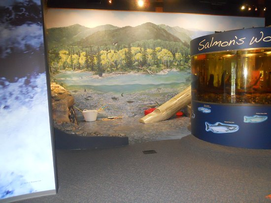 Port Hardy, Canada: Display in the learning centre