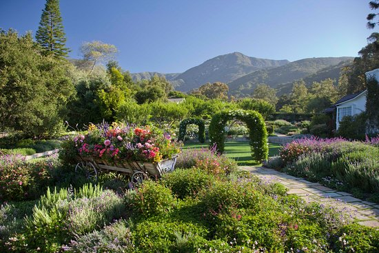 San Ysidro Ranch, a Ty Warner Property: Wedding Lawn