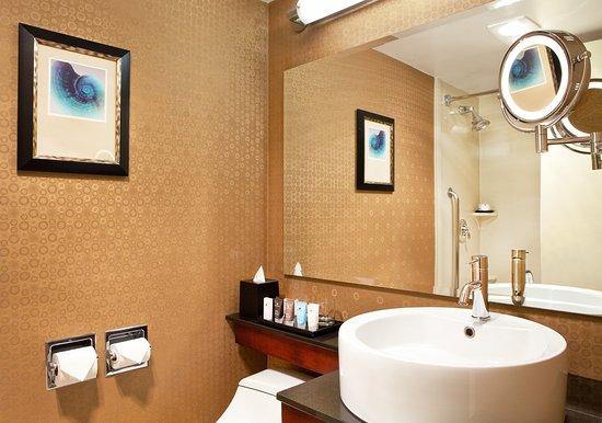 Newton, MA: Guest room bath