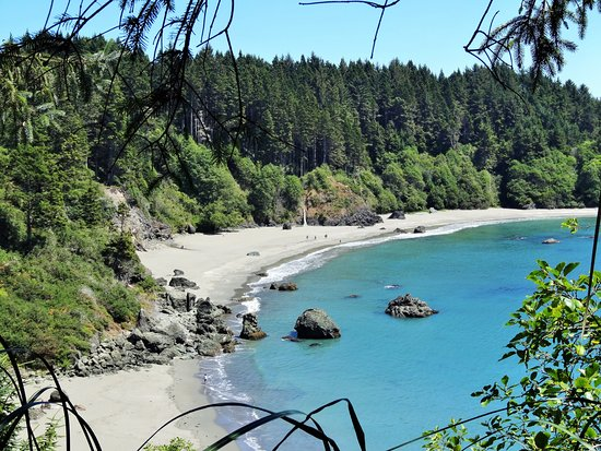 College cove eureka all you need to know before you go for Cabine eureka ca