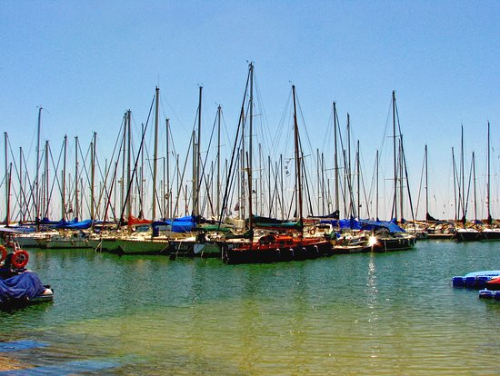 ميلودي هوتيل: Sea Tel Aviv