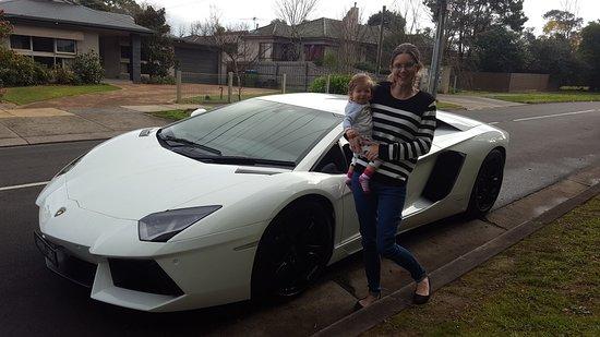 rentals spyder car toronto rental gallardo lamborghini affinity luxury exotic