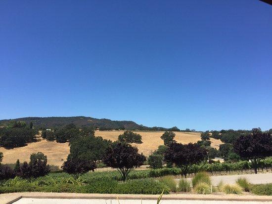 Paso Robles, CA: photo1.jpg