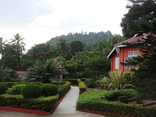Greenwood Resort : More pics