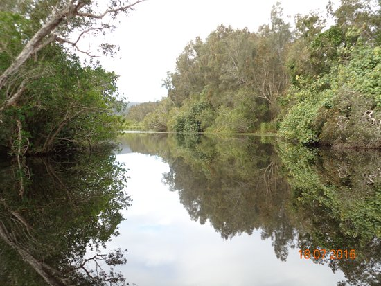 Noosa, Australia: Reflections on the river
