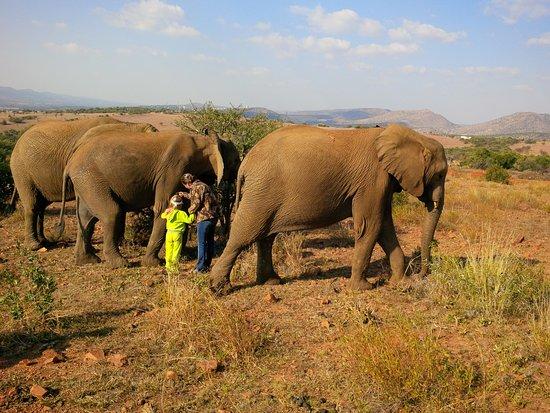 Centurion, Südafrika: Adventure tripper