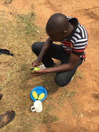 Bwindi Impenetrable National Park, Uganda: photo2.jpg