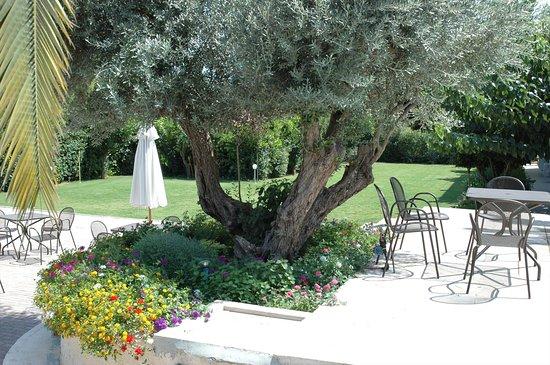 Photo of Myrto Hotel Athens
