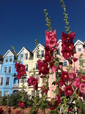 Aldeburgh, UK: Hollyhocks and houses.