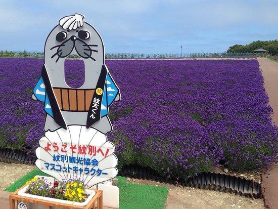 Monbetsu, Japón: photo1.jpg