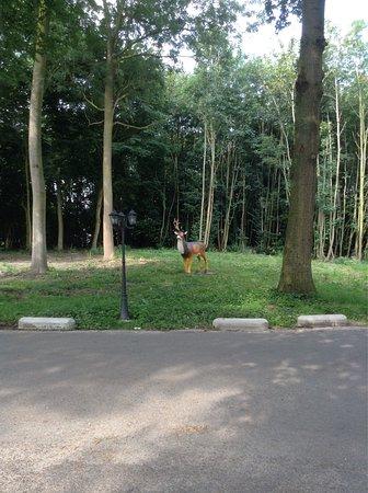 Aardenburg, Países Bajos: Buitenbeelden