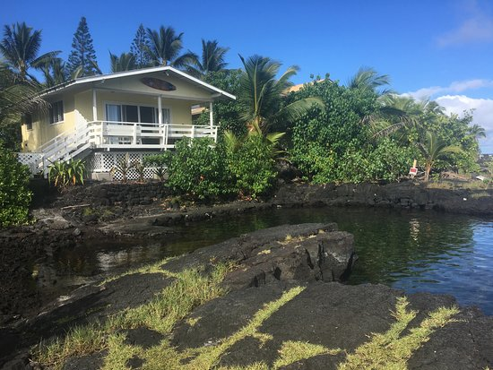 Pahoa, Hawái: Our home stay at Hula Cove.