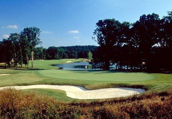 Cartersville, Джорджия: Barnsley Gardens Golf Course