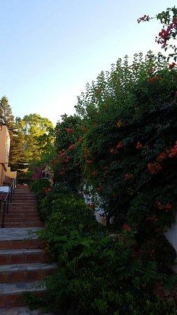Sunrise Apartments : 20160721_194713_large.jpg