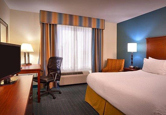 Nampa, Айдахо: King Guest Room