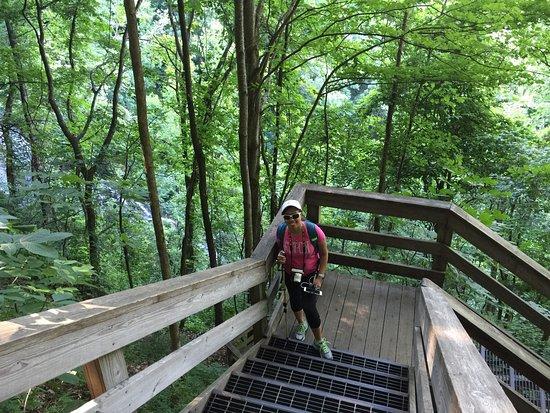 Amicalola Falls State Park: photo3.jpg