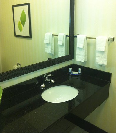 Fairfield Inn & Suites Milledgeville: Suite Bathroom