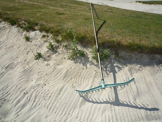 """إيل دو فرانس, فرنسا: Golf Vaucouleurs - Parcours """"La Rivière"""" - bunker - chardon"""