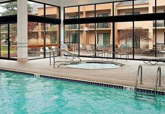 Troy, MI : Indoor Pool & Hot Tub