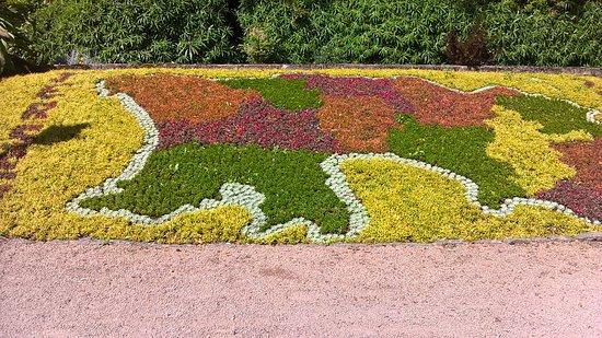 Flower map of Jersey - Bild von Howard Davis Park, St ...