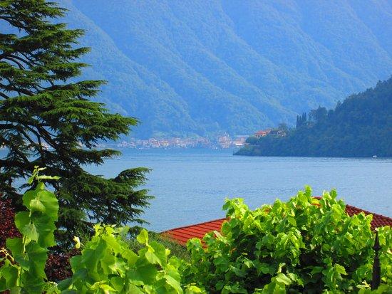 Mezzegra, Italia: Vanuit onze kamer dit uitzicht.