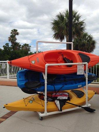 ปุนตากอร์ดา, ฟลอริด้า: Kayak & Paddleboard rentals