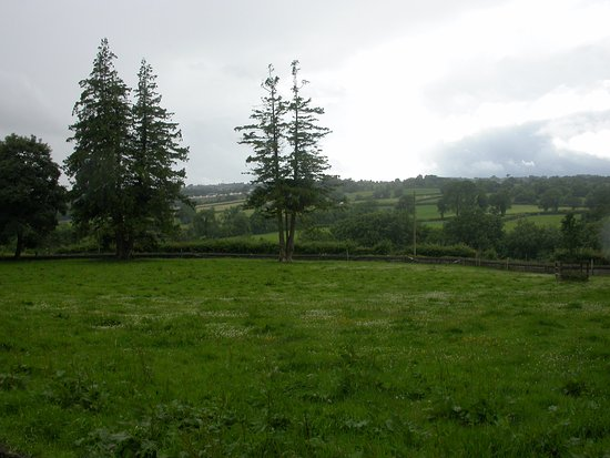 Armagh, UK: View to the road