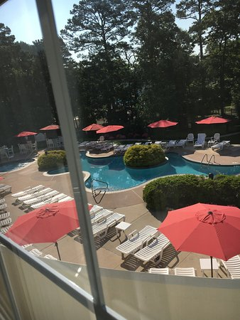 Absecon, NJ: Red Door Spa-not impressed. The grounds of the adults-only pool area.