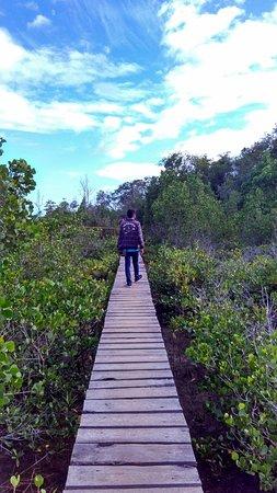 Pulau Lembeh, Indonesia: Foto 5