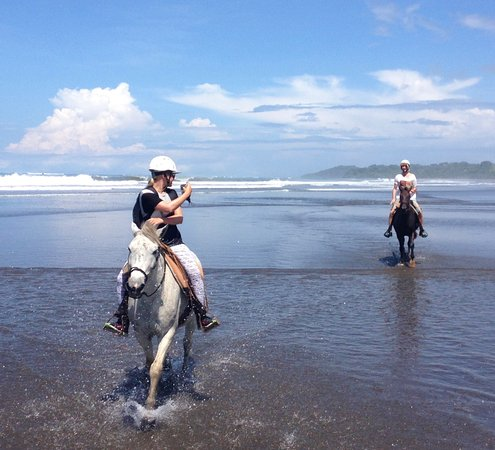 Esterillos Este, Costa Rica: HAPPY HEALTHY HORSES!! WE ARE CR BEACH BARN!!