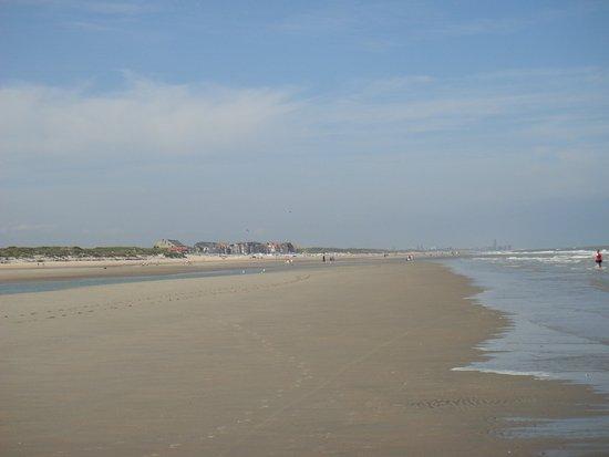 Romantik Manoir Carpe Diem: Schöner Strand auch mit Hund, hier im Juli