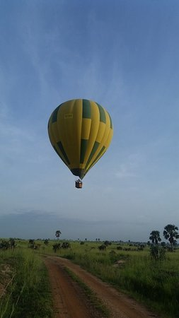 Murchison Falls National Park, Uganda: flying at tree top level