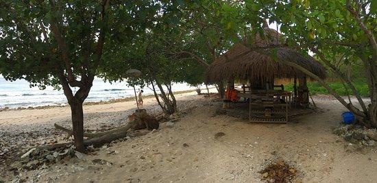 West Bali National Park, Endonezya: photo7.jpg