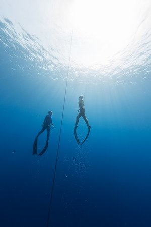 APNEA Koh Samui - Freediving School