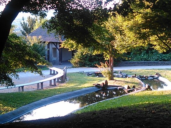 Photo de jardin des plantes avranches for Jardin des plantes orchidees 2016