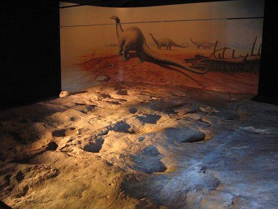 Ichnospace, Musée d'Empreintes de Dinosaures