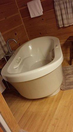 Maryville, TN: Large jacuzzi tub
