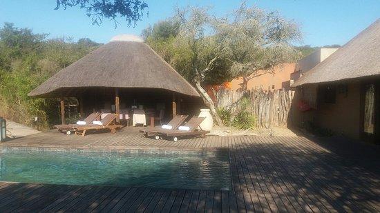 Amakhala Game Reserve, Sudáfrica: 20160713_133948_large.jpg