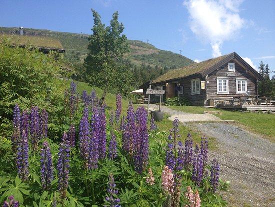 Svingvoll, Norge: Skeistua