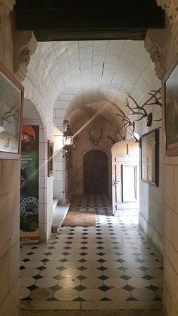 Azay-le-Ferron, Frankrig: Chateau d'Azay le Ferron