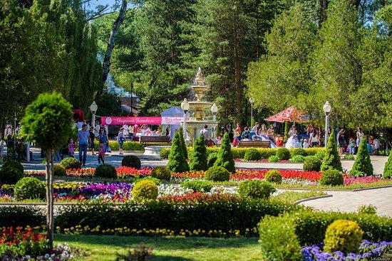 зеленый остров фото черкесск