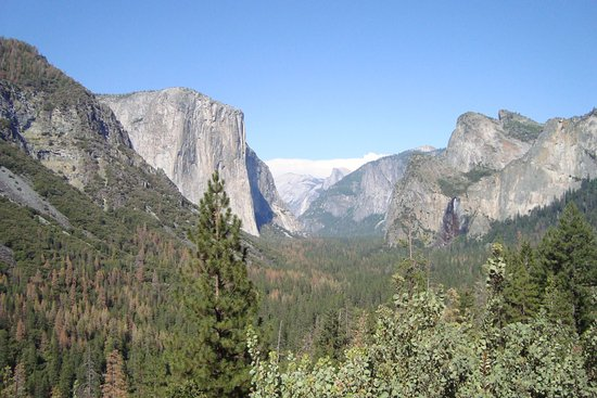 Yosemite Family Adventures - Day Tours: Another great view!