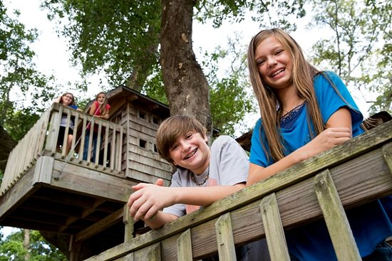 Lynn Meadows Discovery Center: Play house in 100-year-old trees at Tree House Village.