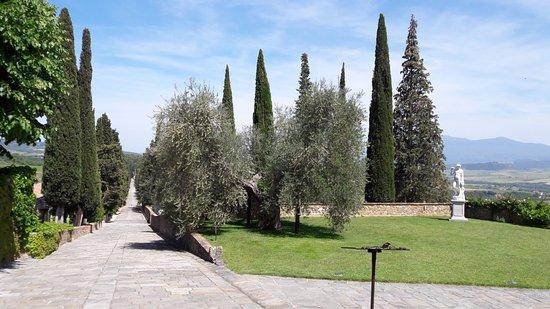 Montalcino, Włochy: на винодельни