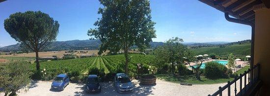 Torgiano, อิตาลี: photo3.jpg