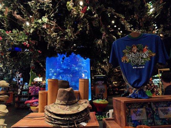 Animal Kingdom Christmas Shirt.Rainforest Cafe Disney Animal Kingdom Picture Of
