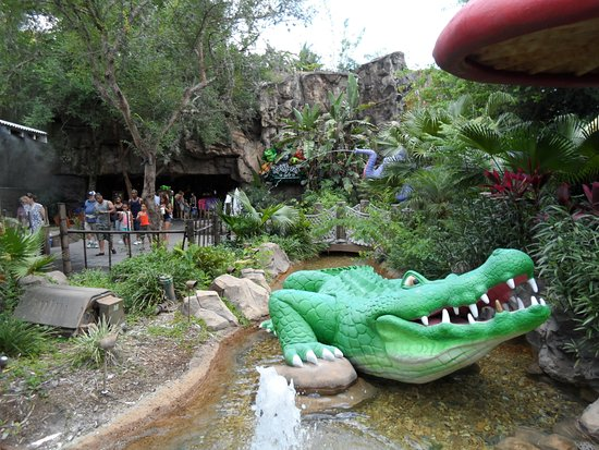 Animal Kingdom Rainforest Cafe Reviews