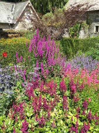 The Garden House: photo1.jpg