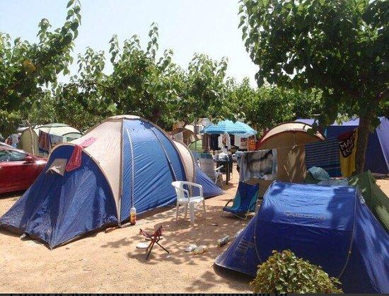 comodo camping cerca de la playa - picture of camping la union