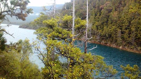 Vista del lago Puelo.